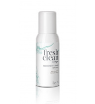 Fresh+Clean Cabin Aerosol Spray